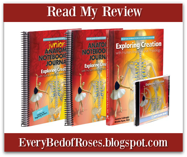 Every Bed of Roses: Exploring Creation with Human anatomy and ...