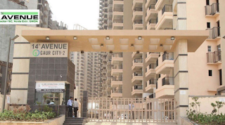 Ready to Move 1 BHK Flat for Rent & Sale Near Gaur City ...