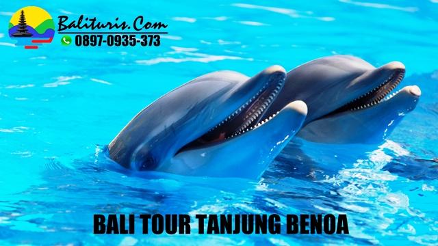 BALI TOUR TANJUNG BENOA