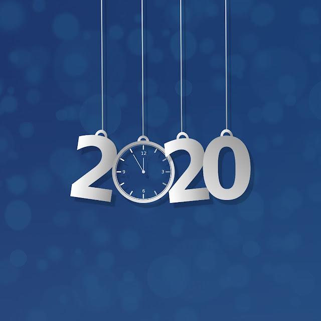 bilan 2020 visiter lyon