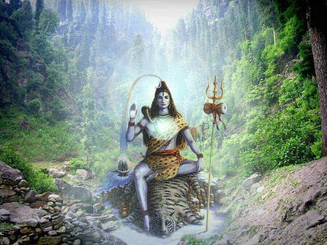 Lord Shiva in forest