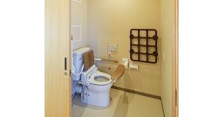 トイレは安心の形『テスリックス』