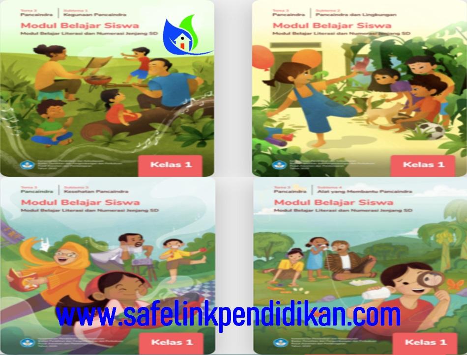 Modul Belajar Literasi Dan Numerasi Tema 3