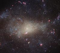Spiral Galaxy NGC 4242