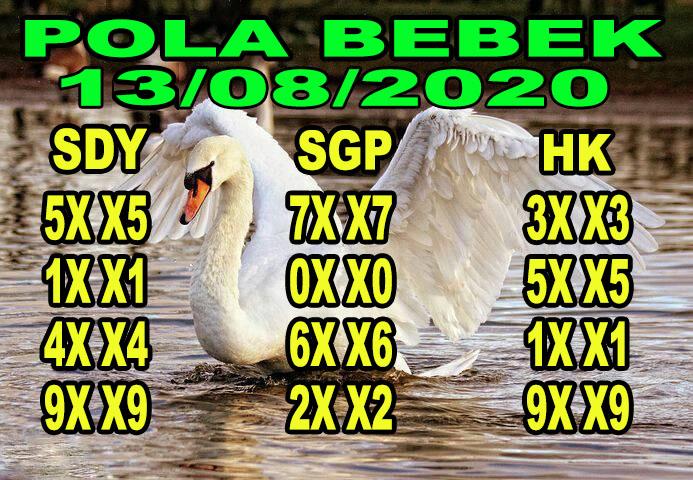 syair sydney pola bebek 13 agustus 2020