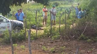 Dois homens são encontrados mortos na zona rural de Jaçanã; imagens fortes