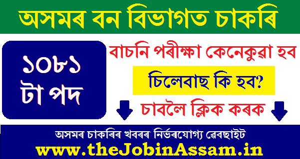 Assam Forest Department Recruitment 2020 Syllabus, Selection Process Etc