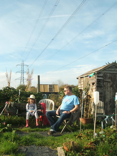 November on the allotment: sunshine, sunflowers and our memory bench