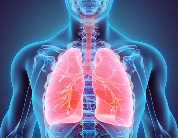 gafacom image result - Lower Respiratory Infections