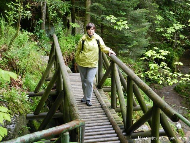 Cascada Gertelbach, Selva Negra, Alemania
