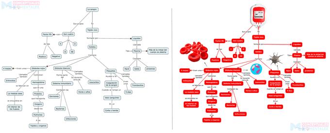 mapa conceptual con diseño creativo