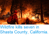 https://sciencythoughts.blogspot.com/2018/08/wildfire-kills-seven-in-shast-county.html