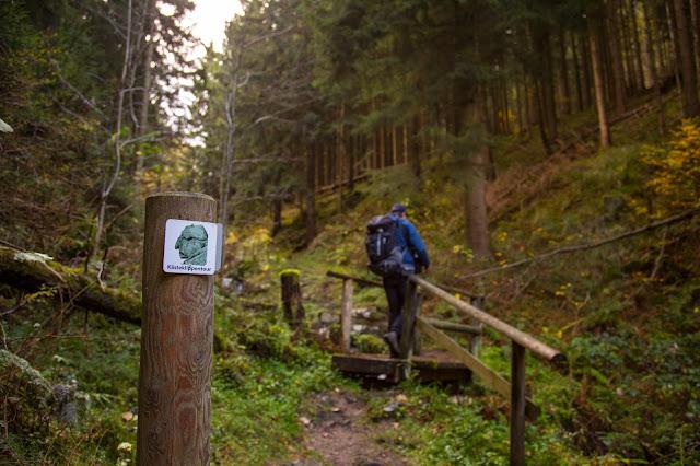 Kästeklippentour Bad Harzburg  Premiumwanderung Harz  Wandern-Harz 07