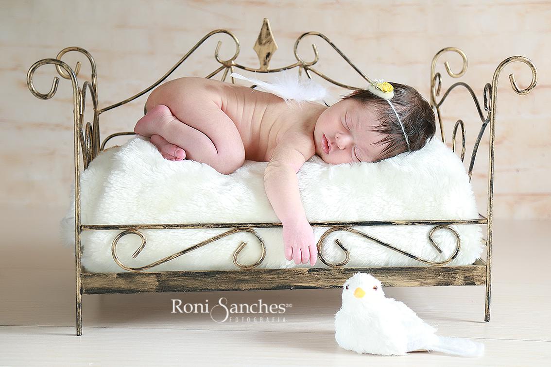 Newborn com asa de anjo