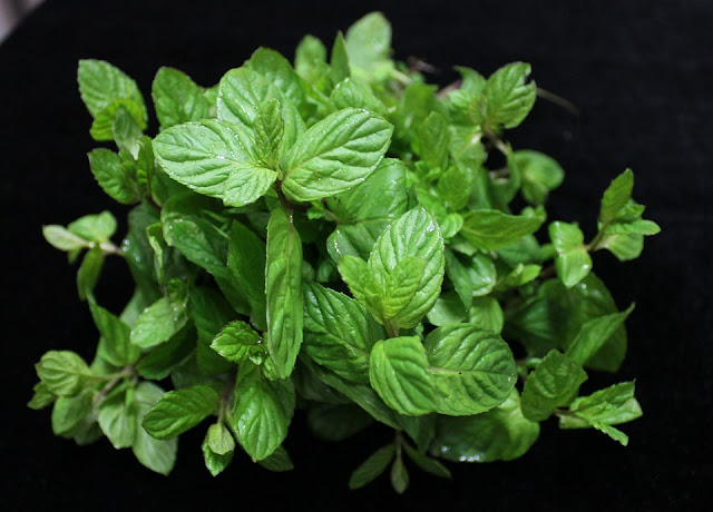 Medicinal properties in the mint leaves.