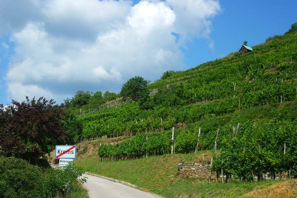 autriche wachau krems world heritage trail randonnée