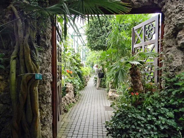 Wałbrzych, palmiarnia, kwiaty, tropiki, zwiedzanie