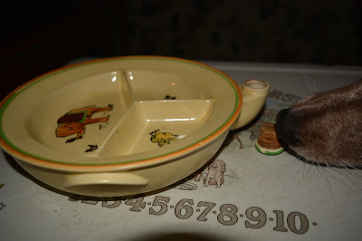 warm water hot food bowl