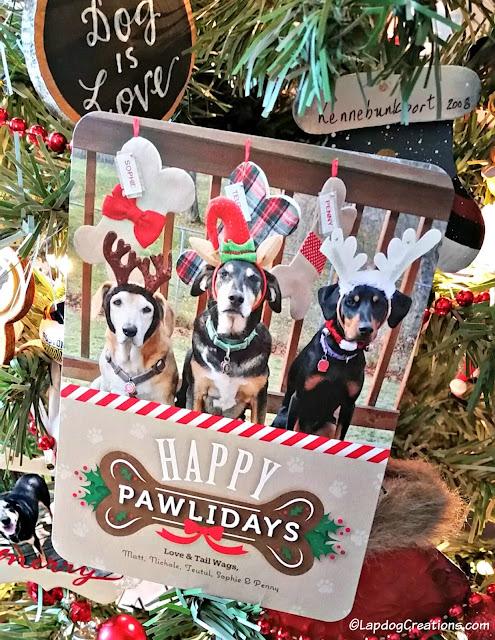 dog themed Christmas card rescue dogs
