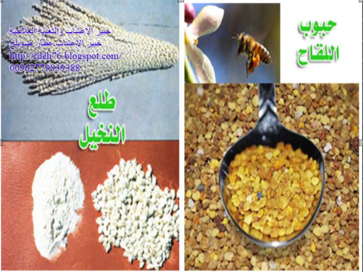 علاج السكري بالاعشاب خبير الاعشاب والتغذية العلاجية طلع النخيل