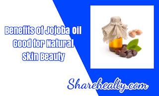 Benefits of Jojoba Oil Good for Natural Skin Beauty