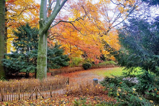Cinquantenaire Park Brussels in Autumn