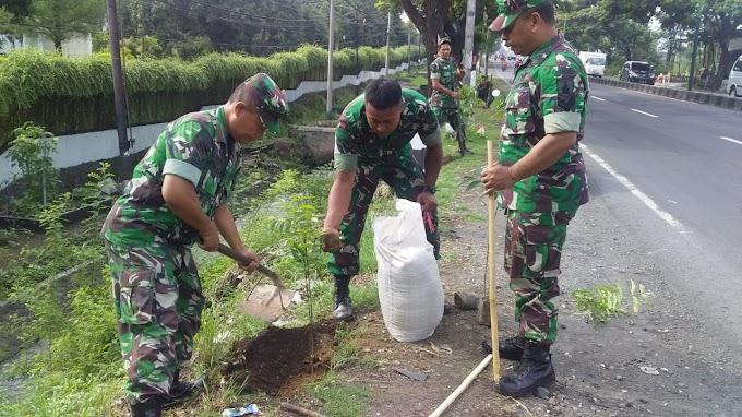 Anggota Koramil 0819/18 Pandaan Tanam Pohon Mahoni Di Jalan Bypass Pandaan