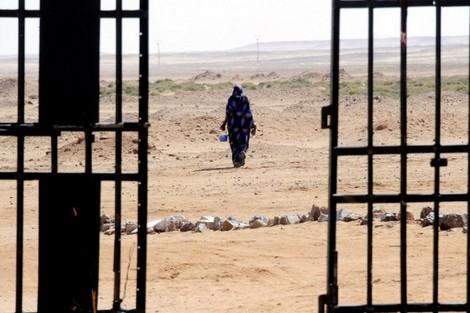 """taroudant press : ربيع """"الواتساپ"""" يكتسح الصحراء .. البوليساريو كرة مفرومة بالرابوني"""