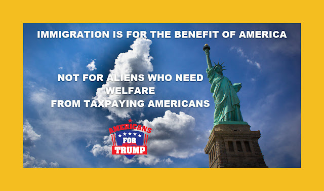 Memes: IMMIGRATION IS FOR THE BENEFIT OF AMERICA