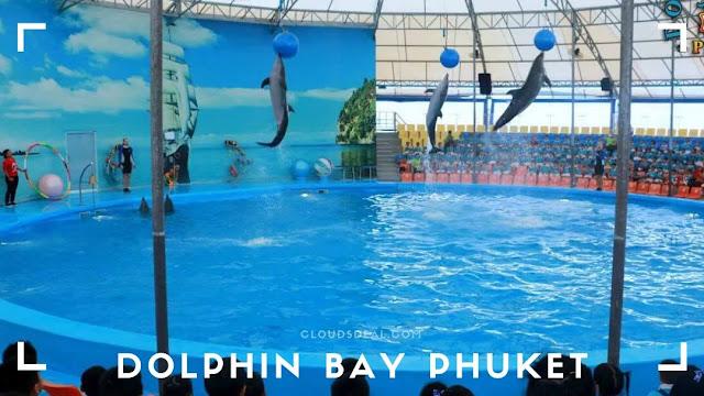 Dolphin Bay Phuket Show