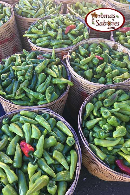 Pimenta mexicana - chile de agua