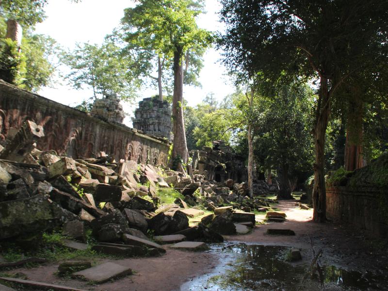 Ta Phrom Angkor Arbol Piedras
