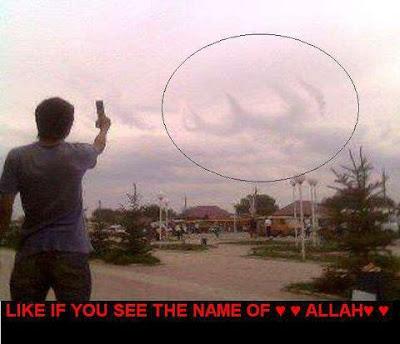 Allah Name On Fish