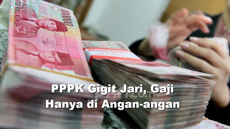 PPPK Gigit Jari, Gaji Hanya di Angan-angan, Banyak yang Belum Kantongi NIP dan SK