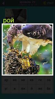 птица на пне которую окружил со всех сторон рой пчел 20 уровень 667 слов