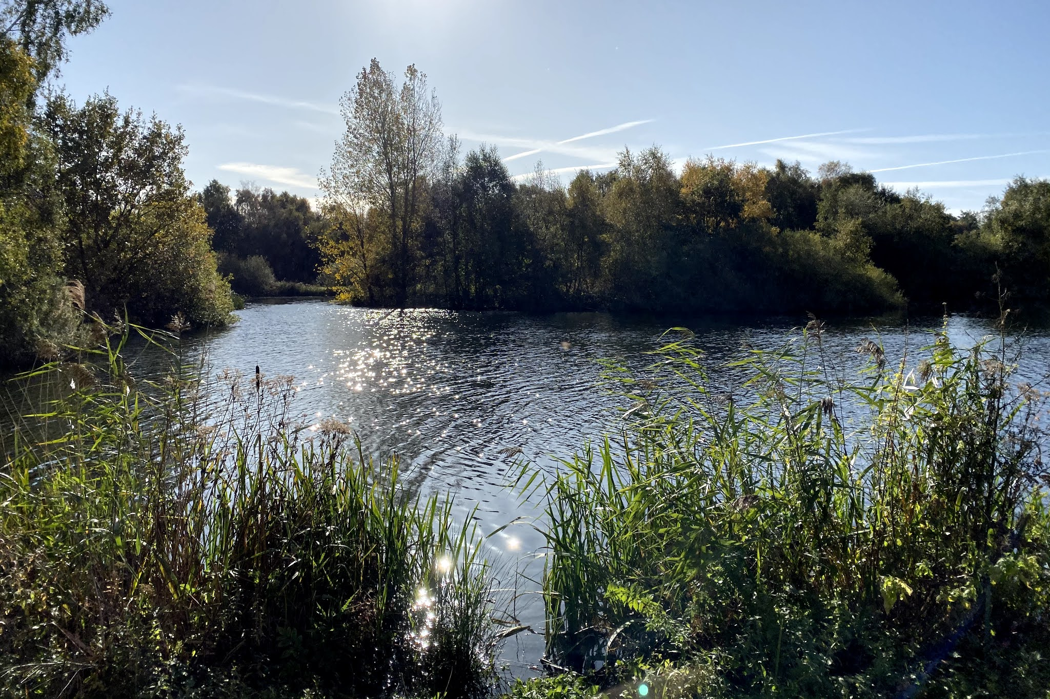 the lake at pensthorpe in Norfolk which is a great place to visit with children