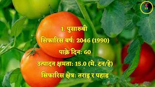 Varieties of Tomato in Nepal | Lok sewa Aayog 2020