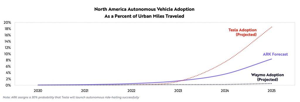 adoption Tesla robotaxi
