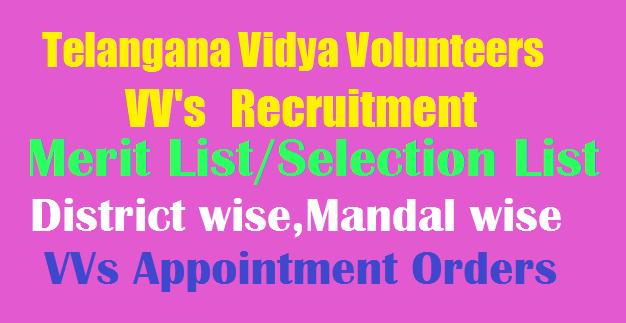 TS Vidya Volunteers(VV's) Merit List/Selection List 2018
