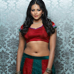 Subhiksha Latest Hot Photoshoot