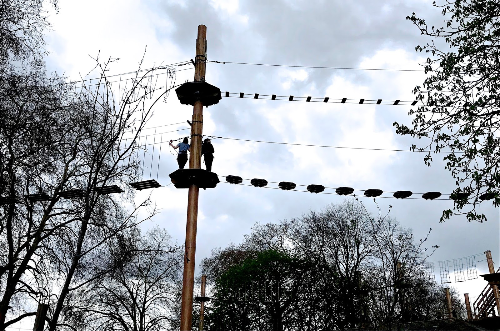 Treetop Ropes Course in Battersea Park