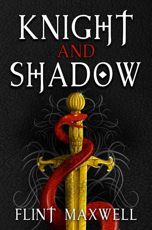 SPFBO 5 Semi Finalist Review - Knight and Shadow by Flint Maxwell