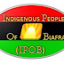 Onitsha tanker explosion not ordinary – IPOB