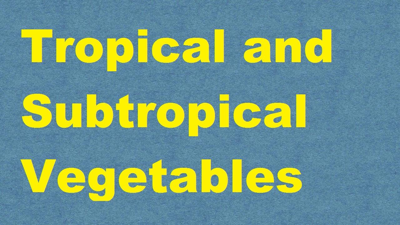 Tropical and Subtropical Vegetables ICAR E course Free PDF Book Download e krishi shiksha