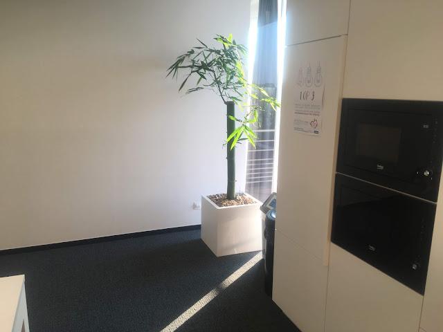 Planten voor bedrijven in Limburg Vlaams-Brabant Antwerpen Brussel prijzen op aanvraag
