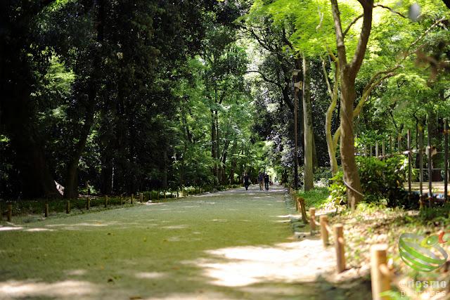 京都~糺の森