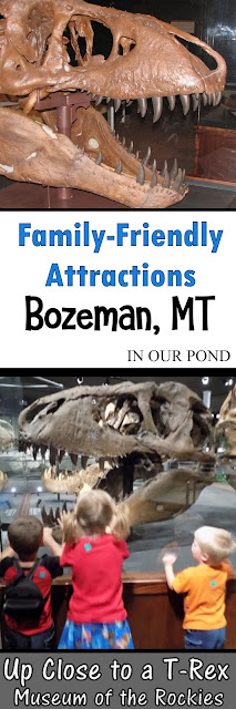 Family-Friendly Attractions- Museum of the Rockies in Bozeman, MT from In Our Pond #museumwithkids #travelwithkids #roadtrip #travel #montana #montanawithkids #kidfriendly #roadtripwithkids #dinosaurs #dinosaurmuseum