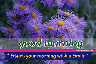 start your morning with smile! Good morning message with purple flowers