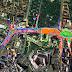 Primăria Oradea a semnat contractul de proiectare pentru reorganizarea traficului în zona Pieței E. Gojdu și a Parcului 1 Decembrie