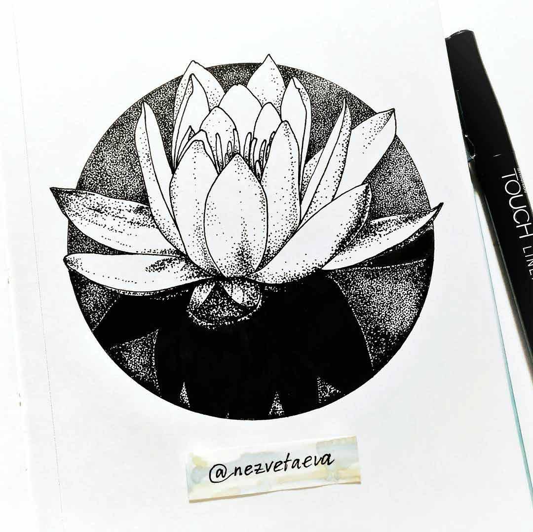 Lotus, Inktober, Sonia Nezvetaeva, art blog